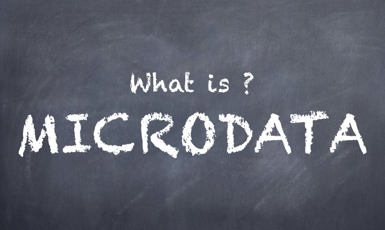 What is Microdata?