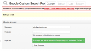 Google Custom Search Settings