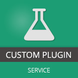 Custom WordPress Plugins