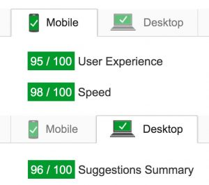 WP-Buddy.com PageSpeed Insight Ratings